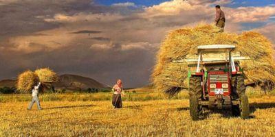 Merkez Bankası Çiftçilerin Birlik Kurmasını İstedi