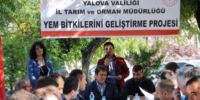 Tarım Ve Orman Müdürlüğü Çiftçilere Yonca Tohumu Dağıttı
