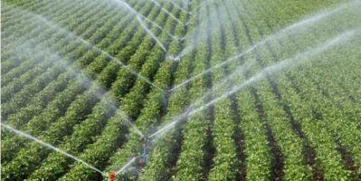 Ankara'da 161 bin dekar tarım arazisi suyla buluştu