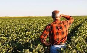 Borç yapılandırma paketinde çiftçi borçları yer almadı!