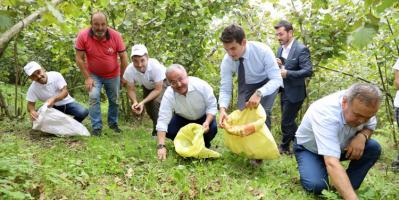 Büyükşehir Belediyesinden Fındık İşçisi İhtiyacını Karşılayacak Proje