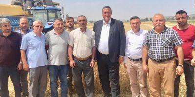 Çeltik çiftçisi fiyat bekliyor