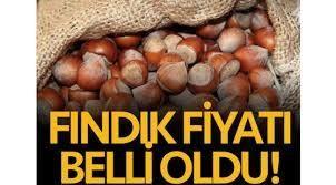 Cumhurbaşkanı Erdoğan: Fındık alım fiyatını açıkladı