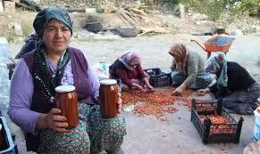 Dağlardan topladıkları doğal ürünleri marmelat yapıp ihraç ediyorlar