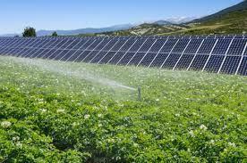 Erzurum'da Tarım Paneli Düzenlendi