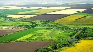 Hazine arazileri çiftçiye ücretsiz verilecek başvurular alındı ilk planda 7 ilde uygulanacak