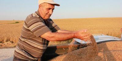 Hububat Üreticileri: Ekmeklik Buğday 1800 Lira Olmalı