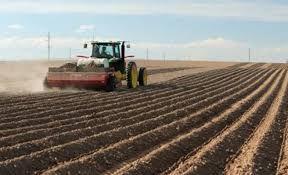 Koronavirüsün gölgesinde tarımda ihracat arttı