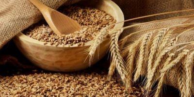 Makarna Üreticileri ve Sanayicileri Derneği: Bankadan ucuz krediyi alan buğday alıyor!