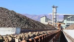Şeker fabrikaları özelleştirildi Türkiye 'Dünya Şeker Süper Ligine' veda etti!