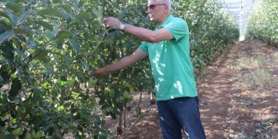 Siirt'ten Dünyaya Elma İhracatı
