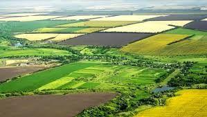Tarım arazilerinde tehlike nihayet fark edildi! Hobi bahçesi veya bağ evi yapılamayacak