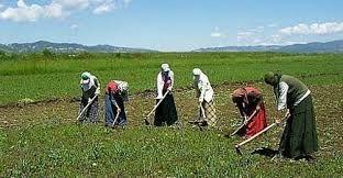 Tarımda Kadın Girişimciler Ödüllendirildi