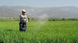 Tarımsal desteklerde çiftçiyi rahatlatacak TÜKAS formülü