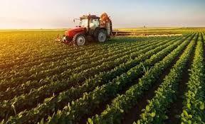 Tebliğ Resmi Gazete'de yayınlandı tarımda hangi yatırımlara destek verilecek?