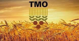 TMO 250 bin ton ekmeklik buğdayı 240 dolardan ithal edecek