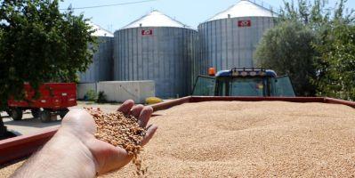 TMO arpa ve buğday ithalatı için düğmeye bastı!