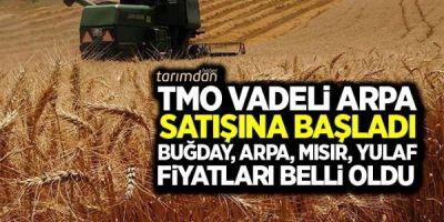 TMO vadeli arpa satışına başladı: Buğday, mısır, arpa ve yulaf satış fiyatları belli oldu