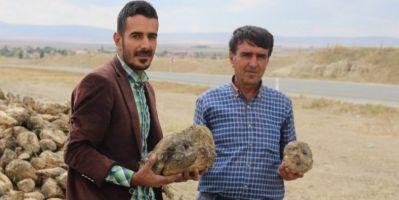 Üniversite Mezunu Genç Çiftçi Babasıyla Tarım Yapıyor
